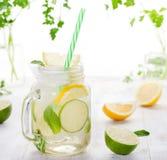 Limonada con las rebanadas del hielo, del limón y de la cal en el tarro, paja Fotografía de archivo