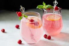 Limonada da framboesa do rosa de Sparklind Imagem de Stock
