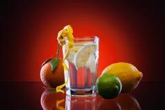 Limonada de la fruta cítrica Imagen de archivo libre de regalías