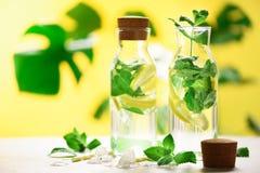 Limonada de la fruta cítrica - la menta, el limón y el monstera tropical se va en fondo amarillo Bebida del Detox Agua infundida  fotos de archivo