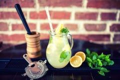 Limonada de la menta fresca con los ingredientes en un jarro Efecto del vintage Imagen de archivo