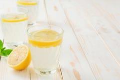 Limonada de refrescamento Imagem de Stock