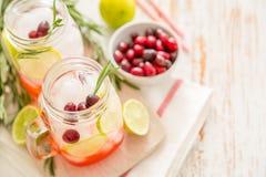 Limonada do arando no frasco de vidro Imagens de Stock
