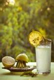 Limonada e limões frescos no verão em um fundo verde Imagens de Stock Royalty Free