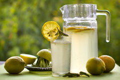 Limonada e limões frescos no verão em um fundo verde Imagem de Stock