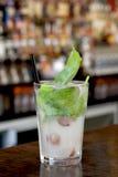 Limonada exótica de la albahaca de la uva Fotografía de archivo libre de regalías