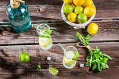 Limonada fría del verano con la fruta fresca Imagenes de archivo