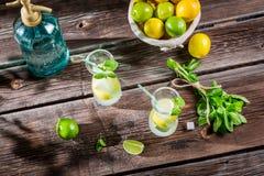 Limonada fría del verano con la fruta fresca Imágenes de archivo libres de regalías