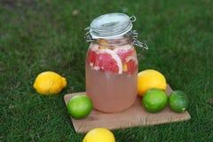 Limonada fresca Fotografia de Stock Royalty Free