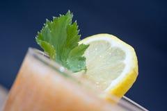 Limonada fresca decorada com folhas verdes Foto de Stock Royalty Free