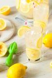 Limonada fresca hecha en casa orgánica del apretón Fotografía de archivo libre de regalías