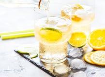 Limonada hecha en casa de la fruta cítrica Foto de archivo libre de regalías