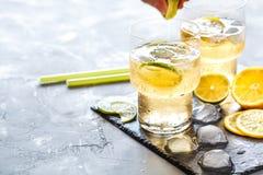 Limonada hecha en casa de la fruta cítrica Imagen de archivo
