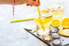 Limonada hecha en casa de la fruta cítrica Imagenes de archivo