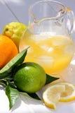 Limonada, refrigerador imagem de stock