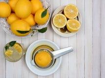 Limonada todavía que exprime vida Fotos de archivo