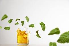 Limonadas, cóctel con el sistema del verano de la maqueta del hielo Imagen de archivo libre de regalías