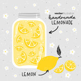 Limonade avec des citrons dans le pot en verre Illustration de vecteur Images libres de droits