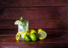 Limonade avec la menthe et la glace Photographie stock