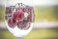 Limonade, boissons d'été Verres de boisson régénératrice assaisonnés avec le fruit frais Cerise d'été avec une boisson régénératr photos libres de droits