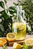 Limonade d'agrume avec des glaçons dans le graphique de vintage Boisson Limoncello d'été Images libres de droits