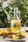 Limonade d'agrume avec des glaçons dans le graphique de vintage Boisson Limoncello d'été Image libre de droits