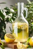 Limonade d'agrume avec des glaçons dans le graphique de vintage Boisson Limoncello d'été Photos libres de droits
