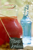 Limonade de mangue Images libres de droits