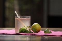 Limonade de Tulasi, Basil Lemonade saint image stock