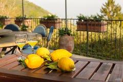 Limonade in einer Glasflasche, Gläser, Zitronen auf Zweigen mit Blättern auf einem Holztisch Lizenzfreies Stockfoto