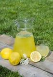 Limonade en plakken van citroen en bloemen Royalty-vrije Stock Afbeeldingen