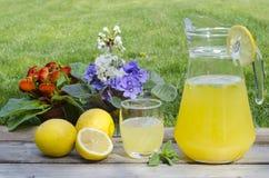Limonade met munt en gekleurde bloemen Stock Foto