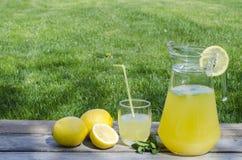 Limonade met munt op hout Royalty-vrije Stock Afbeeldingen