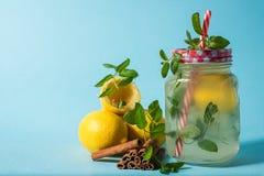 Limonade met verse munt Stock Foto