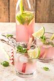 Limonade mit Rhabarber, Minze und Kalk lizenzfreie stockfotografie