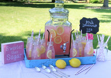 Limonade rose au pique-nique en parc Photo libre de droits