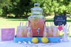 Limonade rose au pique-nique en parc Image libre de droits