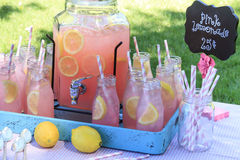 Limonade rose au pique-nique en parc Photographie stock
