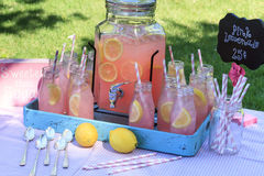 Limonade rose au pique-nique en parc Image stock