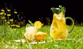 Limonade in weide stock fotografie