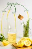 Limonadeingrediënten Stock Afbeelding