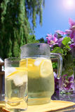 limonata immagine stock