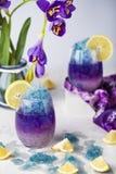 Limonata blu del ghiaccio di farfalla del fiore tropicale del pisello immagine stock libera da diritti