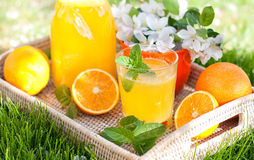 Limonata casalinga dalle arance e dal limone Immagine Stock