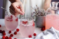 Limonata del lampone del dolce di estate con lavander Immagini Stock