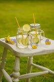 Limonata di estate Fotografia Stock