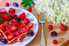 Limonata di recente schiacciata con la frutta fresca variopinta e fotografia stock