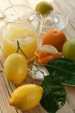 Limonata, dispositivo di raffreddamento Immagine Stock Libera da Diritti