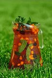 Limonata fredda su erba verde di estate fotografie stock