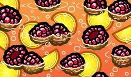 Limonata fresca del lampone di estate Immagini Stock Libere da Diritti